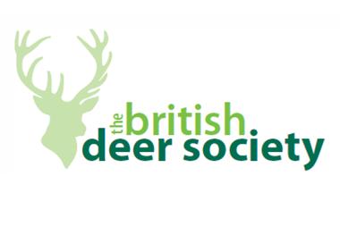 bds logo l
